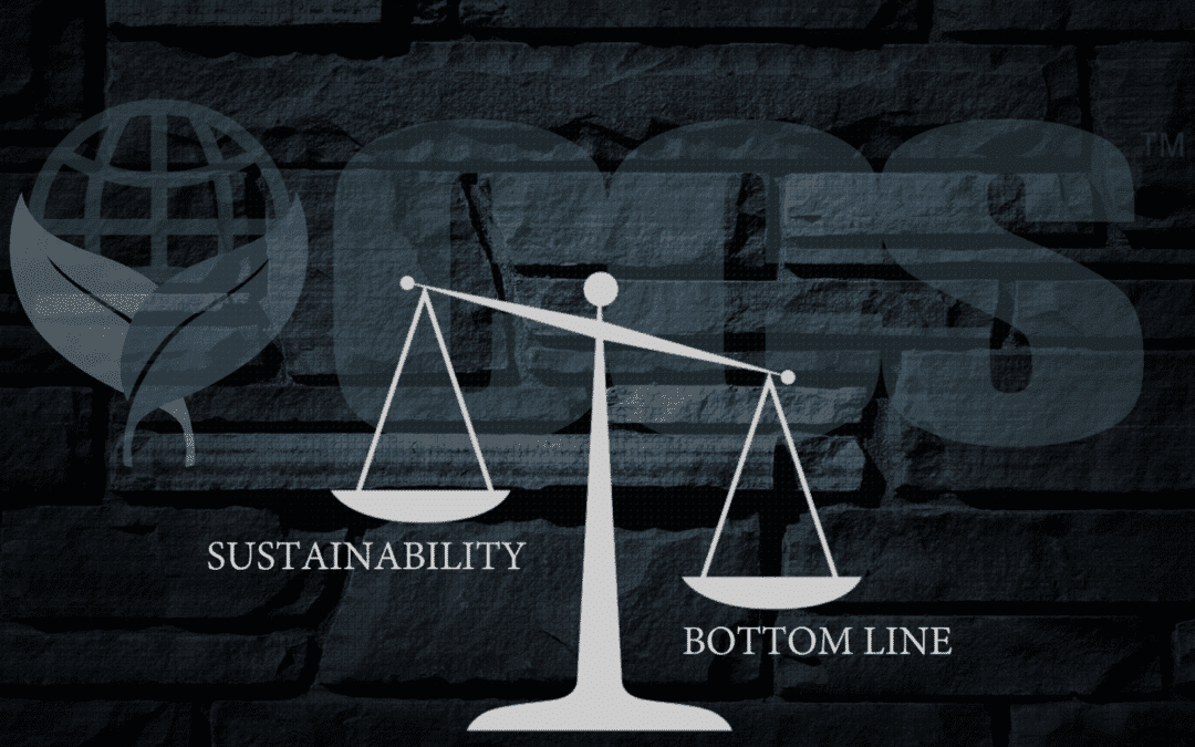 The Grand Promise of Sustainability: Strategies for Making It Real